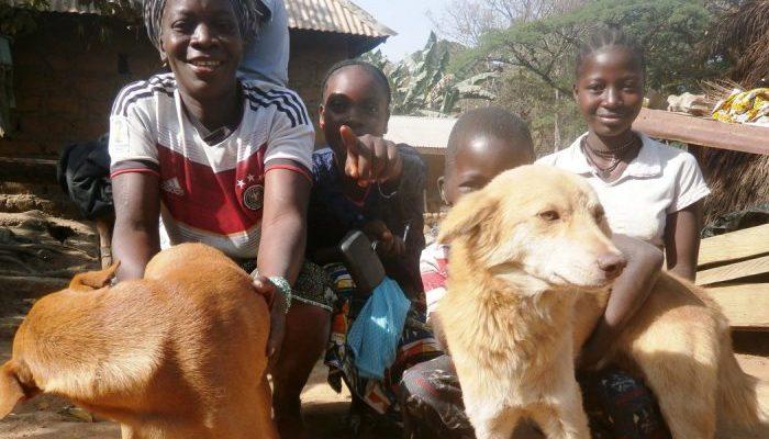 Парень учит детей ухаживать за животными. Так он надеется остановить насилие в своей стране