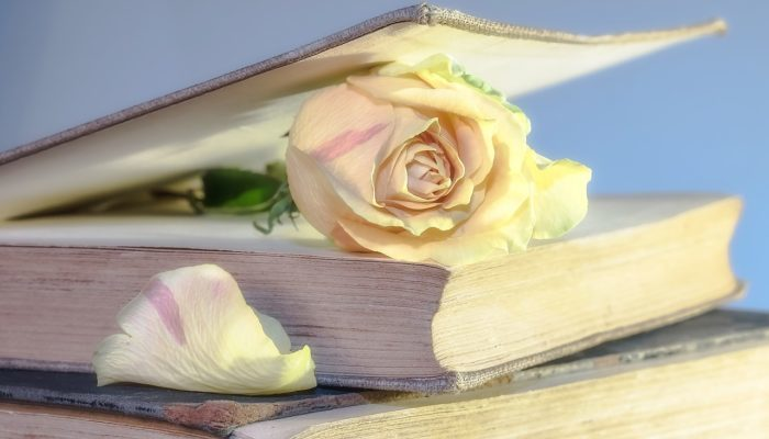 Писатель каждый день сочинял маленький рассказ для смертельно больной жены. Всего получилось 1778