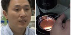 Первые дети с исправленным ДНК родились в Китае. Научное сообщество осудило эксперимент