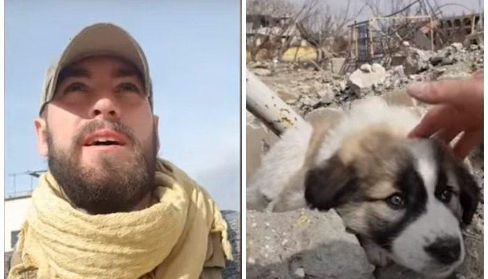Военнослужащий привязался к собаке во время службы в Сирии и хотел забрать нового друга с собой домой. Но это оказалось не так просто