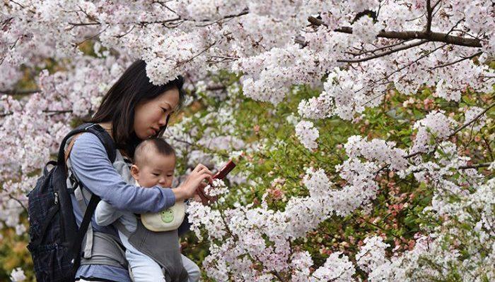 Исследование: Плохое поведение детей связано с зависимостью родителей от телефонов