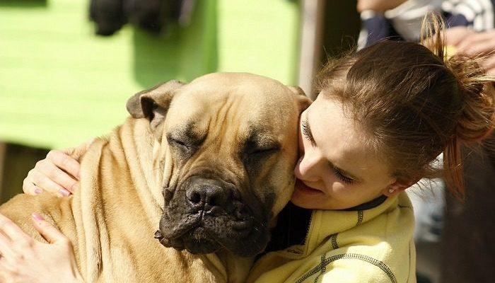 Пара провела свадьбу на три месяца раньше намеченного срока, когда узнала, что их пёс может не дожить до торжества