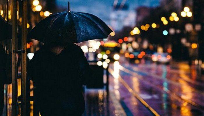 (Видео) Парень увидел в дождливый день привязанную к столбу собаку и накрыл её своей курткой. Людей покорила его доброта