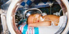 Здоровый ребёнок появился на свет через 3 месяца после смерти матери