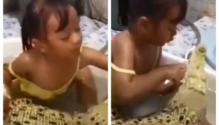 (Видео) Маленькая девочка взяла с собой в ванну крокодила, чтобы почистить ему зубы