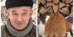 (Видео) Житель Ярославской области спас от гибели 36 кошек, которых бросили дачники