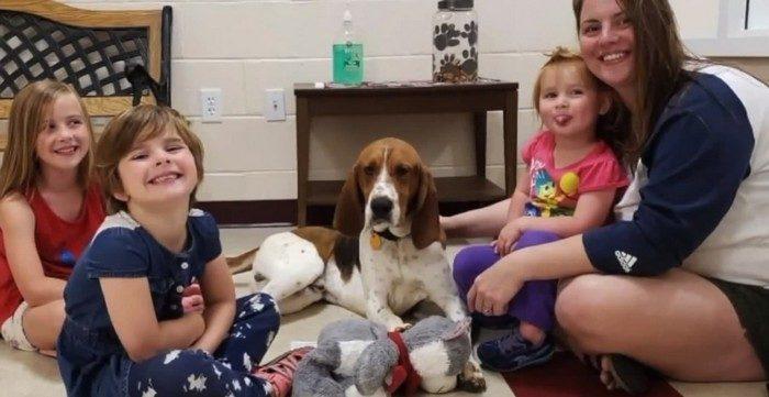 Семья взяла из приюта очень легкомысленного пса. А он спас их маленьких дочерей от похитителя!