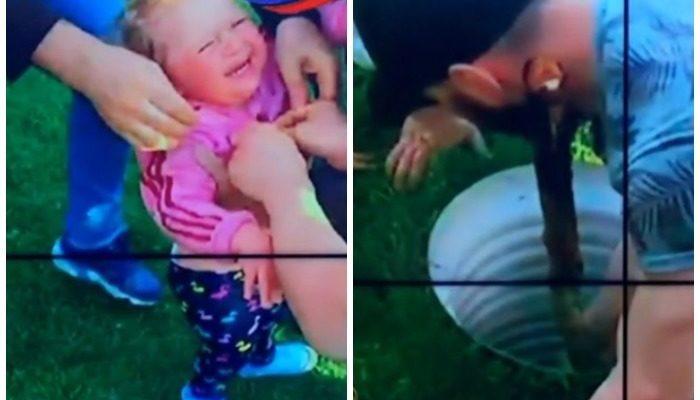 (Видео) 2-летнюю девочку из колодца диаметром 50 см вытащили с помощью мальчика, которого держали за ноги
