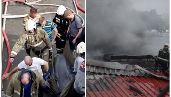 (Видео) Пожарные вынесли двух дельфинов весом по 300 кг из горящего дельфинария на носилках!