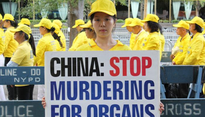 Эксперты призывают ООН расследовать масштабные убийства инакомыслящих китайцев ради их органов