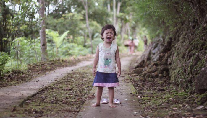 4-летняя девочка несколько месяцев плакала из-за потерянного в лесу плюшевого друга. Игрушка вернулась к ней через 14 лет