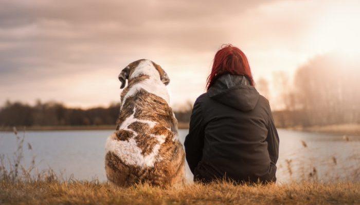 Успешный московский фотограф оставила карьеру, чтобы помогать собакам (как мечтала в детстве)