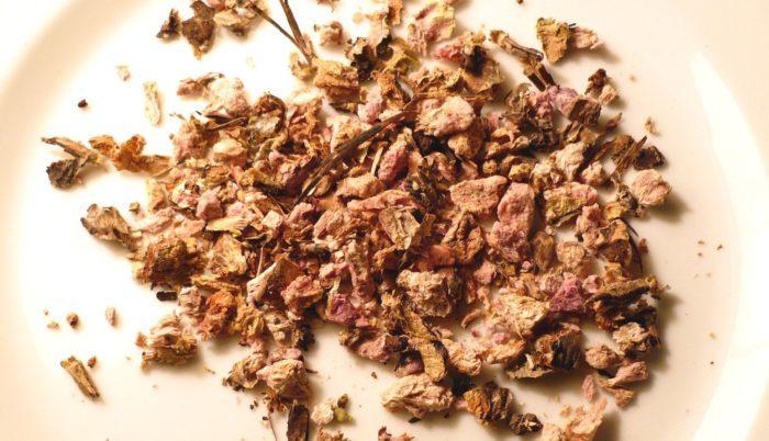 высушенные соцветия родиолы розовой