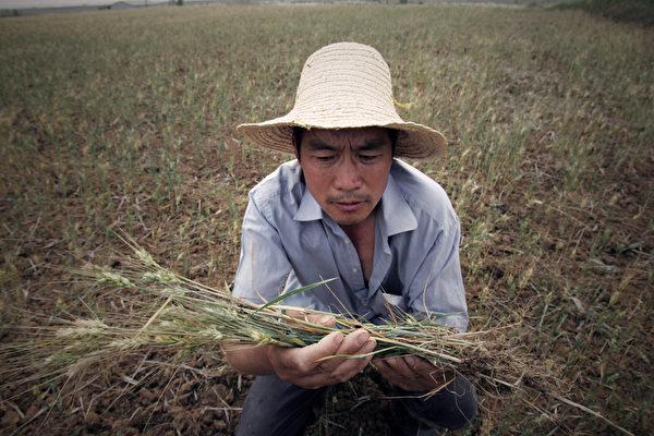 Почему в Китае возможен продовольственный кризис?