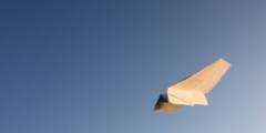 Кто сказал, что в древности не было самолётов?