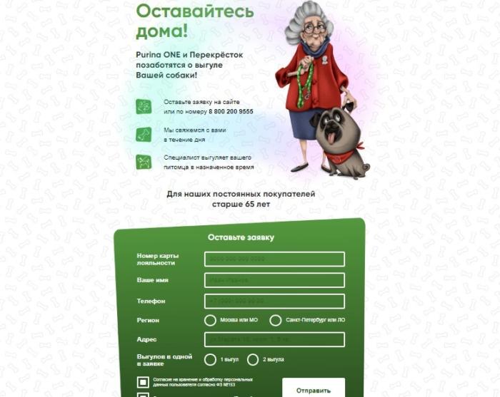 Сервис по выгулу собак для пенсионеров предложили «Перекрёсток» и Purina One