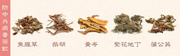 Какие 5 трав помогут в лечение вируса, по мнению специалиста китайской медицины?