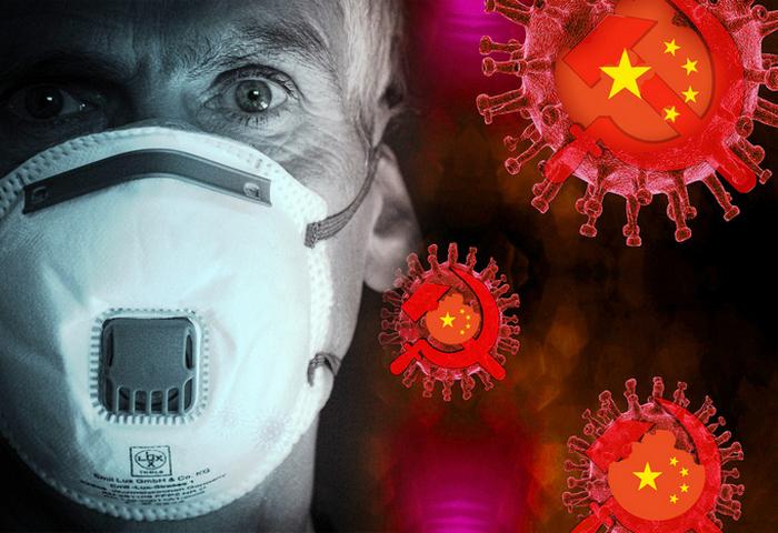 Выбор нашего редактора: Почему вирус COVID-19 мы теперь называем «вирусом КПК»