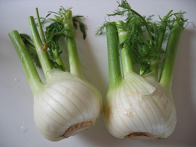 луковицы фенхеля обыкновенного
