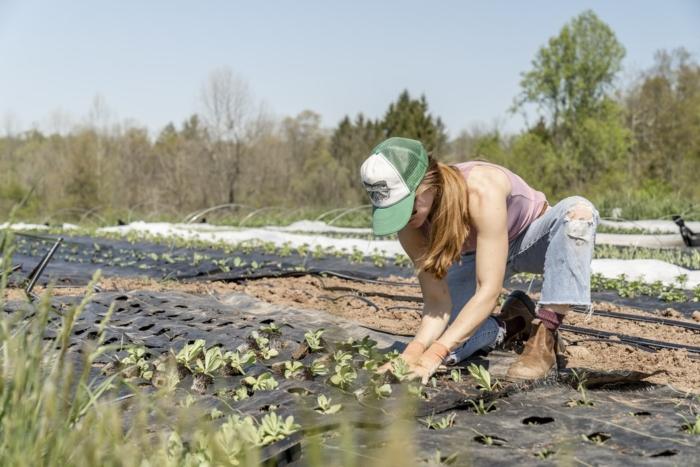 Графический дизайнер бросила город и перебралась на ферму. Девушка стала здоровее и счастливее!