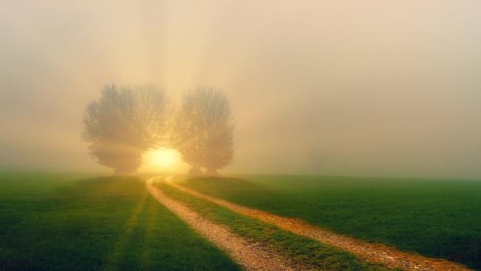 Искреннее раскаяние в ошибках позволит прожить долгую и спокойную жизнь. На примерах двух семей
