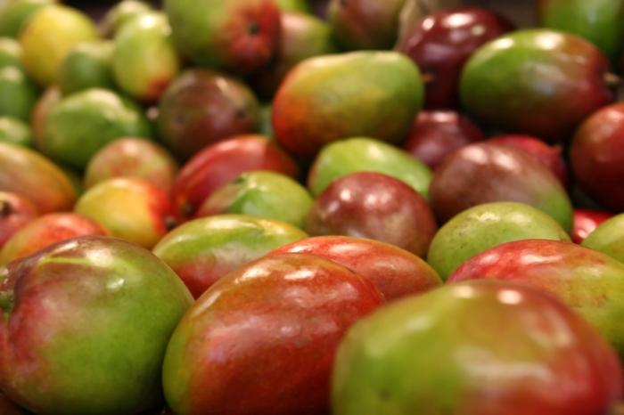 Польза манго для здоровья: король фруктов