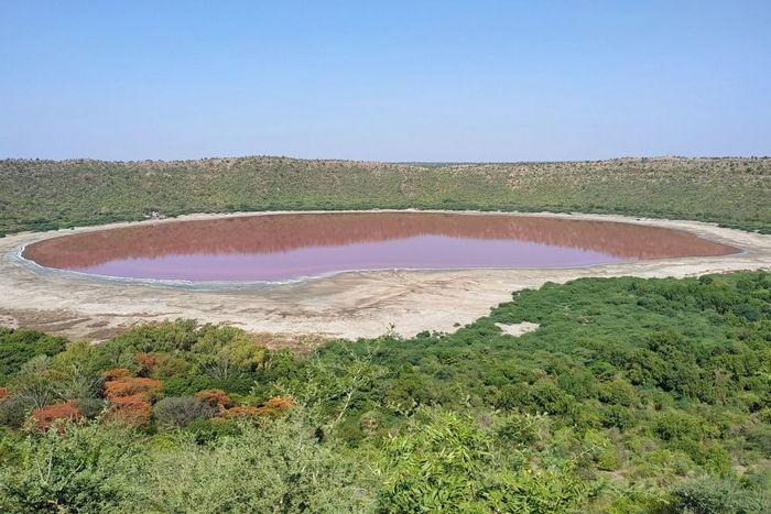 Озеро Лонар стало розовым