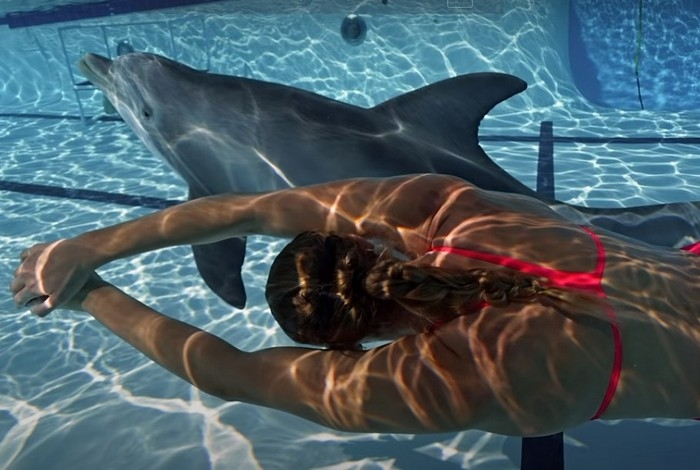(Видео) В дельфинариях начнут выступать роботы? Всё идёт к этому!