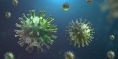 Учёные предполагают новый симптом COVID-19: сыпь во рту
