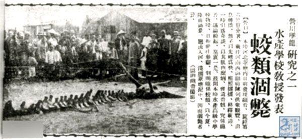 фотография газетной статьи про дракона