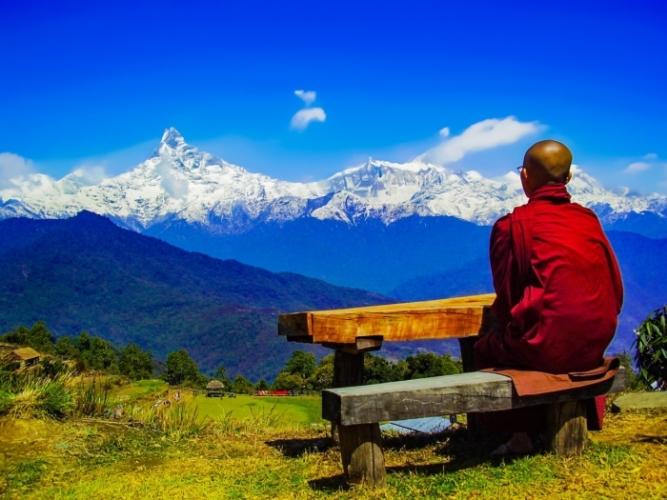 Монах со слезами на глазах рассказал о прошлой жизни, когда он был свиньёй
