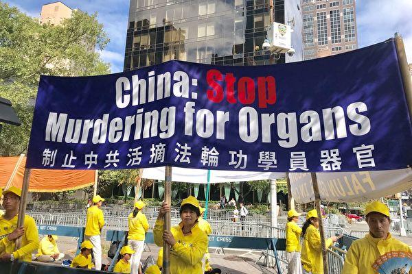 Мир должен сказать «нет» убийствам людей в Китае ради получения органов