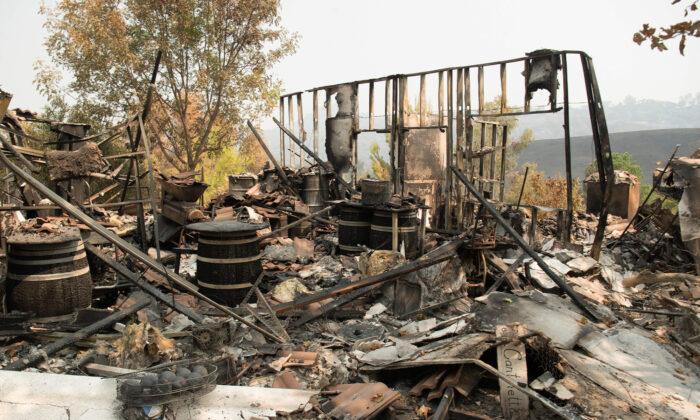 Пожары забрали у него всё: дом, имущество, друга. Но нежданная поддержка помогла справиться с бедой