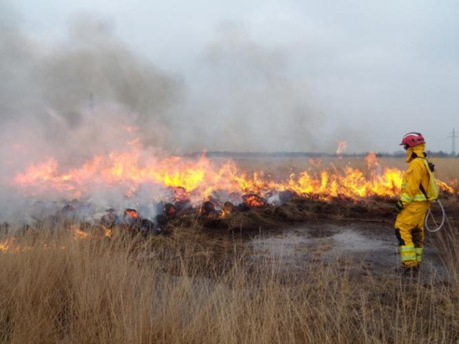 (Видео) Огонь сжёг всю округу, но не тронул участок с памятником погибшей девочке