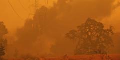 «Когда ситуация принимает опасный оборот, крутые парни берутся за дело». Фермер спас 40 домов и 400 человек от пожара