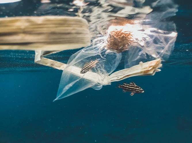 Человечество превратило планету в помойку. 14 млн тонн микропластика насчитали исследователи только на морском дне, и цифра растёт