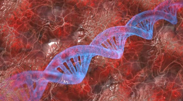 Отрицательный резус-фактор: необычное происхождение или случайная мутация?