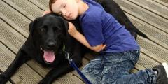 Мальчик берёт из приюта старых собак, от которых все отказываются. Его объяснение трогает до глубины души