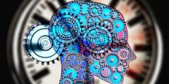 Стресс — причина избыточного веса, или как сознание влияет на наше тело
