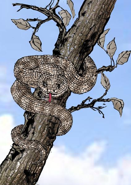 Свинья и змея — круги перерождений чиновника за грехи прошлой жизни. Став человеком, он всё отчётливо помнил