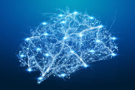 Цифровой рентген человеческого мозга на синем фоне 3D-изображения