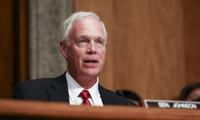 Сенатор Рон Джонсон на заседании комитета Сената по внутренней безопасности в Вашингтоне 30 июля 2019 года