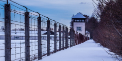 Заключённые накопили 2,3 млн рублей, чтобы оплатить обучение школьника. Так они решили вернуть обществу долг