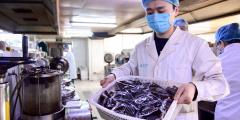 Укрепление иммунной системы с помощью традиционной китайской медицины в условиях пандемии коронавируса