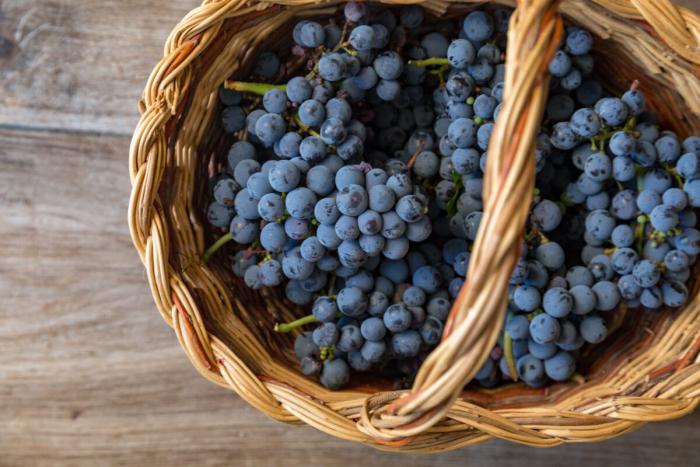 Торговая война Китая сАвстралией может распространиться инастоловый виноград