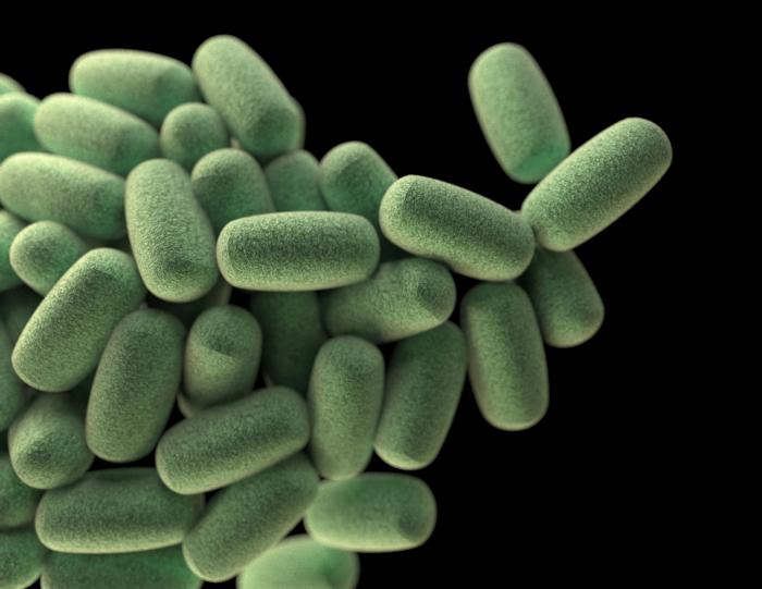 Пробиотики: зачем, какие и сколько?