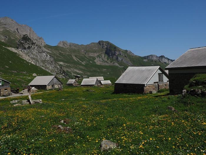 С 1 августа россияне смогут бесплатно получить гектар земли в Арктике