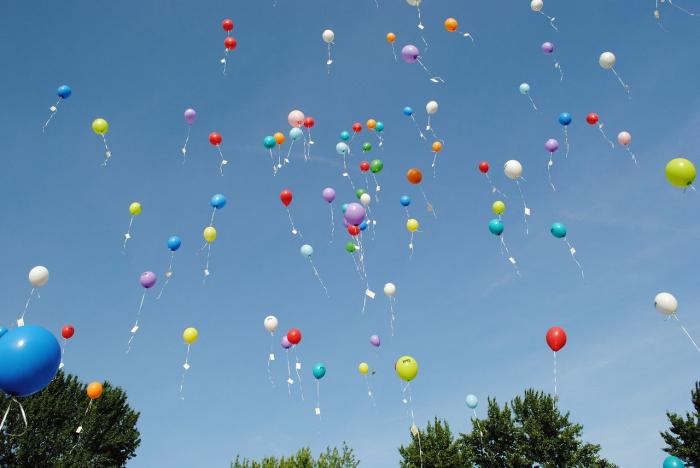 Выпускников попросили не запускать воздушные шары в небо