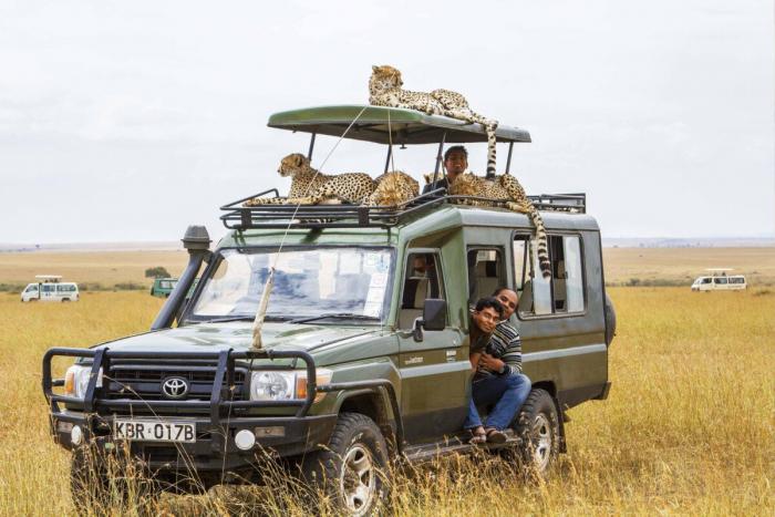 семья, гепарды, машина, туристы