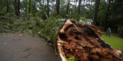 Ураганный ветер и дождь обрушились на юг США, работают спасательные службы